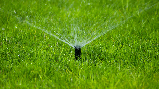 Irrigation-picture